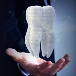 La struttura del dente